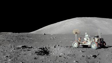 Photo of Premieră istorică pentru omenire. Prima semință de bumbac a încolțit pe Lună