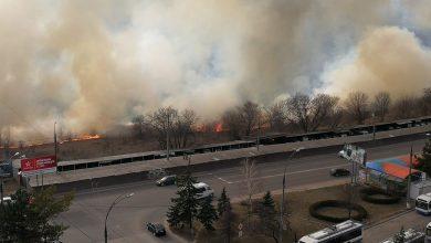 Photo of foto | Incendiu de proporții la Botanica. Vegetația uscată de pe un teren arde cu putere