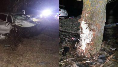 Photo of foto | Grav accident în raionul Anenii Noi. Un bărbat a decedat, iar alți doi, transportați la spital, după ce s-au izbit cu mașina într-un copac