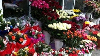 Photo of Vânzătorii de flori, verificați din nou. Inspectorii fiscali vor vizita comercianții pe 8 martie