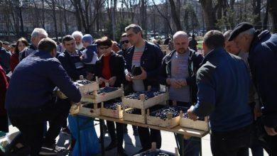"""Photo of Târgul """"Ia Moldova acasă"""" va avea loc și duminica viitoare. Oamenii, invitați în centrul capitalei să cumpere struguri cu doar 5 lei/kg"""