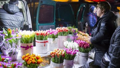 Photo of Comerțul cu flori, sub lupa FISC-ului. Cei care au comis nereguli, sancționați dur