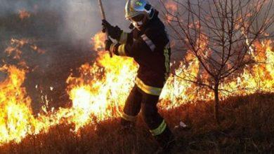 Photo of Pompierii continuă lupta cu incendiiile de vegetație. Peste 200 de hectare de teren au fost cuprinse de flăcări