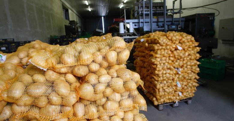 """Photo of Zeci de tone de cartofi din Belarus, infectați cu bacteria """"putregaiul inelar"""", urmau să ajungă în piețele din Moldova"""
