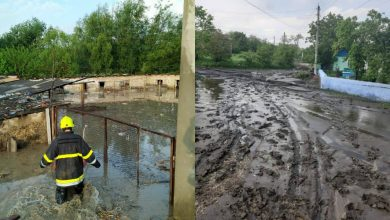 Photo of foto, video | Ploile din weekend au făcut prăpăd în țară. Zeci de gospodării și sute de hectare de culturi agricole au fost inundate