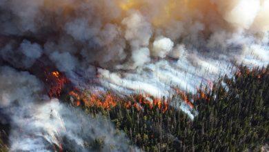 Photo of foto, video | Pădurea siberiană, în flăcări deja de câteva săptămâni. Focul s-a extins pe o suprafață mai mare decât teritoriul Belgiei