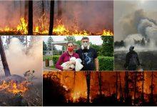 Photo of foto, video   Peste 2 milioane de hectare din Rusia, cuprinse de flăcări. Incendiile dezastruoase pot fi văzute chiar și din spațiu