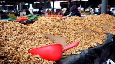 Photo of Maia Sandu, îngrijorată de monopolizarea exportului de nuci: Fosta guvernare ar fi impus o taxă de 50 eurocenți pentru fiecare kilogram