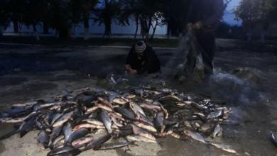 Photo of foto | Au prins 200 de kg de pește într-o noapte: Doi locuitori ai raionului Cahul, amendați pentru că pescuiau ilegal în apele de frontieră