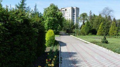 Photo of Parcul Dendrariu va avea încă o intrare. Pe unde vei putea ajunge în inima naturii?