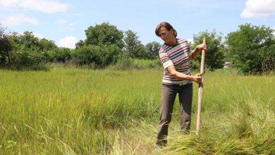 Photo of video | Cosește, taie lemne, coace pâine și nu îi mai ajunge timp pentru iubire. Cum arată femeia de la sat între realitate și egalitate?