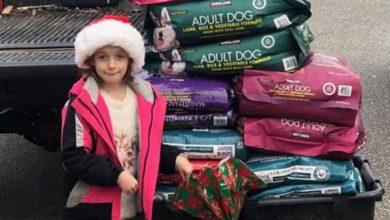 Photo of foto | Nu și-a dorit jucării sau gadgeturi de Crăciun. O fetiță de 8 ani a adunat bani pentru a cumpăra mâncare animalelor dintr-un azil de sărbători