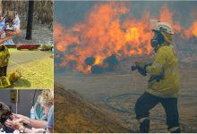 Photo of Catastrofa din Australia: Circa trei miliarde de animale au murit sau au fost strămutate anul trecut din cauza incendiilor