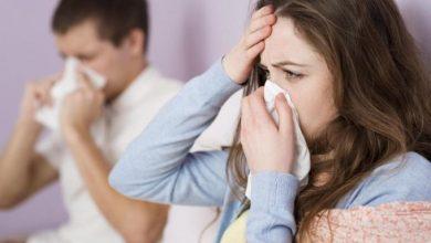 Photo of Cum să deosebești alergia la ambrozie de infecția cu COVID-19? Răspunsul specialistului