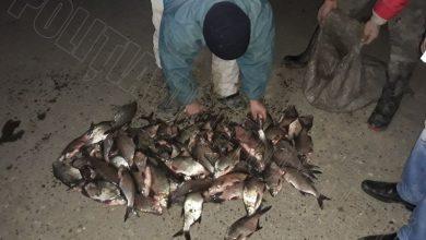 Photo of Au aruncat undițele și au pescuit… amenzi. Patru moldoveni, depistați noaptea trecută la frontieră cu 70 de kg de pește prins ilegal