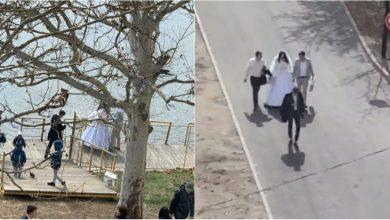 Photo of video | Dragoste în vremea coronavirusului. Un cuplu a decis să-și organizeze nunta în parcul Valea Trandafirilor