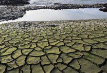 Photo of Măsuri extreme din cauza secetei: O țară ar putea raționaliza consumul de energie electrică