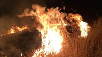 Photo of foto   Hectare întregi de vegetație au ars timp de 24 de ore. În ce localități au fost incendiile?