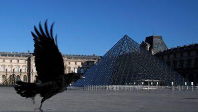 Photo of Muzeul Luvru se pregătește de redeschidere. Când va fi permis accesul vizitatorilor?