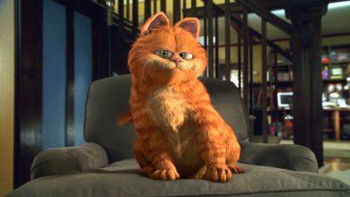Photo of foto | Garfield, motanul-vedetă al benzilor desenate americane, a împlinit 42 de ani