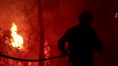 Photo of video   Incendiile de vegetație s-au abătut din nou peste Grecia. Ard păduri din apropierea Atenei