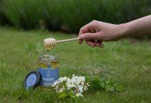Photo of foto | Regina Naturii – primul magazin online cu miere 100% naturală, livrată direct la ușă! Porția ta de sănătate la doar un click distanță