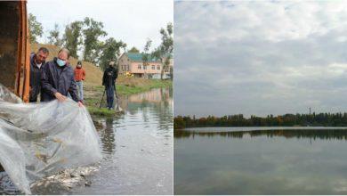 """Photo of foto   Lacul """"La Izvor"""", mai bogat cu 3,5 tone de pește"""