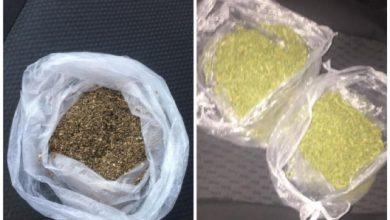 Photo of video | Operațiune anti-drog de amploare la nordul țării. Polițiștii au ridicat substanțe narcotice de 100.000 de lei și bani marcați