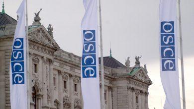 """Photo of video   """"Primul tur a fost organizat profesionist, în pofida provocărilor epidemiologice"""". Concluziile OSCE vizavi de alegerile prezidențialele"""