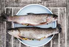 Photo of 3 specii de pești pe care trebuie să le consumi pentru a-ți asigura organismul cu grăsimi naturale