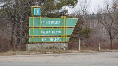 Photo of doc | Universitatea Agrară de Stat din Moldova a publicat rezultatele preliminare ale admiterii