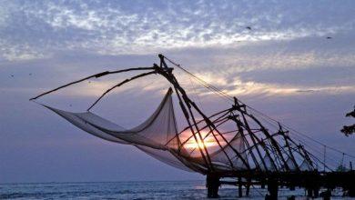 Photo of Plan de salvare a biodiversității! Țărilor din Uniunea Europeană li se solicită interzicerea plaselor de pescuit