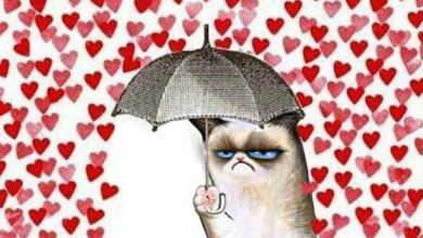 Photo of 7 activități de Ziua Îndrăgostiților pentru persoanele singure și plictisite de romantică