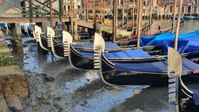 Photo of Imagini dezolante la Veneţia, cu bărci şi gondole blocate în noroi. Canalele au secat din cauza nivelului scăzut al apei