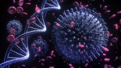 Photo of studiu | Persoanele nevaccinate riscă să se reinfecteze cu COVID-19 o dată la 16 luni