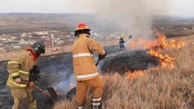 Photo of video   Incendiile de vegetație au pus pe jar pompierii. În 24 de ore aceștia au stins cinci focare