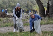 Photo of Educația ecologică, o nouă materie? A fost lansată o petiție pentru obligativitatea acesteia în școli și grădinițe