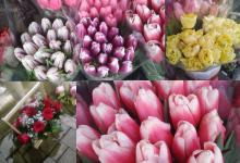 Photo of 8 martie, prilej de scumpiri. Cum s-a schimbat prețul florilor din piețe din Chișinău, în ajunul sărbătorii