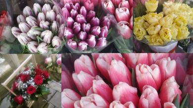 Photo of 8 martie, prilej de scumpiri. Cum s-au schimbat prețurile în piețele de flori din Chișinău, în ajunul sărbătorii