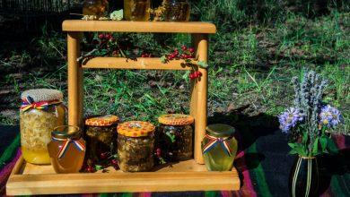 Photo of foto | Înțepături și multă muncă – prețul unei afaceri dulci. Familia Vulpe din Bucovăț povestește cum e să fii apicultor în Republica Moldova