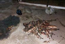 Photo of Unul a înjurat oamenii legii, iar altul s-a ascuns în sat. Doi tineri, prinși cu plasele pline de pește într-o rezervație naturală