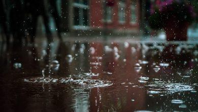 Photo of Ploi pe tot teritoriul țării: Cum va fi timpul în următoarele zile