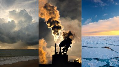 """Photo of Raport: """"Încălzirea globală va produce daune majore naturii, infrastructurii şi economiei"""""""