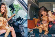Photo of foto | A renunțat la locul de muncă pentru a locui într-o dubă cu animalele de companie. Cum arată noua casă a unei tinere
