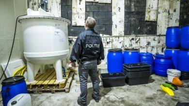 Photo of Laborator imens de droguri sintetice, descoperit de poliția olandeză. Producea un milion de euro pe zi