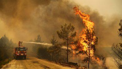 Photo of A treia zi de incendii devastatoare în Turcia: Serviciile de urgenţe, în luptă continuă cu zece focare active