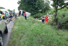 Photo of Cu microbuzul în copac. Un tânăr a decedat pe loc, iar altul a ajuns la spitalul din Căușeni