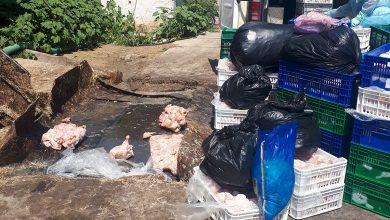 Photo of foto | Pericol biologic: 1,6 tone de pui infestat cu salmonella, depistat la un agent economic