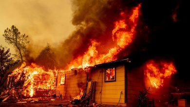 Photo of SUA: Peste 1.600 de pompieri luptă cu un nou incendiu de vegetaţie izbucnit în nordul Californiei