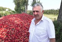 Photo of Nu le-a aruncat, ci le-a depozitat. Ce spune agricultorul din Dondușeni care a descărcat 60 de tone de mere pe marginea drumului